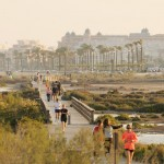 El Grupo Ecologista Mediterráneo castiga la urbanización de la Ribera de Algaida en sus premios 2017