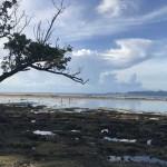 El Salar de los Canos protagonizará una jornada medioambiental para la reivindicación